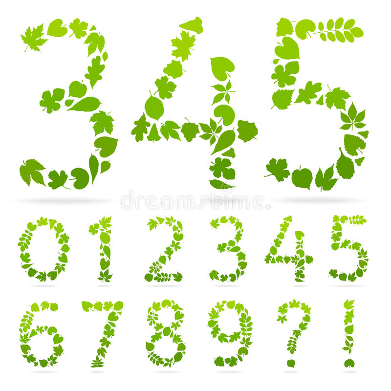 Vector Numbers of green leaves. stock illustration