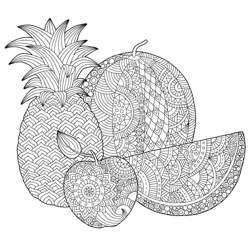 Vector o abacaxi tirado mão, melancia, ilustração da maçã para o livro para colorir adulto Esboço a mão livre para anti adulto ilustração do vetor