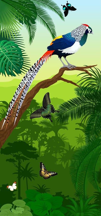Vector o baner vertical da floresta úmida da selva com o faisão e as borboletas do ` s da senhora amherst do diamante ilustração royalty free