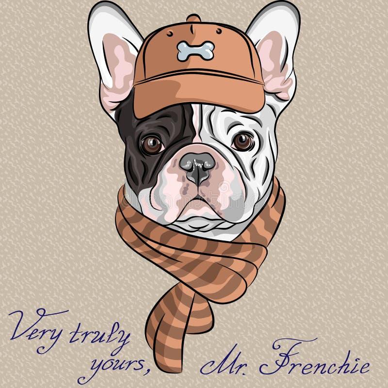 Vector o buldogue francês b do cão engraçado do moderno dos desenhos animados ilustração royalty free