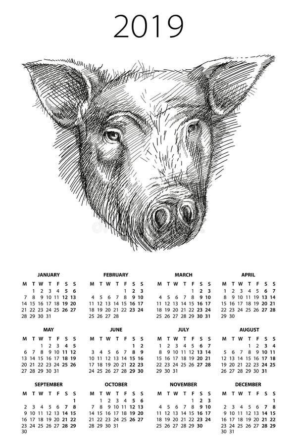 Vector o calendário de parede por 2019 anos com cabeça do esboço do porco ou do varrão no preto no fundo branco A semana parte de ilustração stock