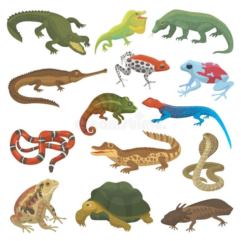Vector o camaleão selvagem dos animais selvagens animais do lagarto da natureza do réptil, serpente, tartaruga, ilustração do cro ilustração stock