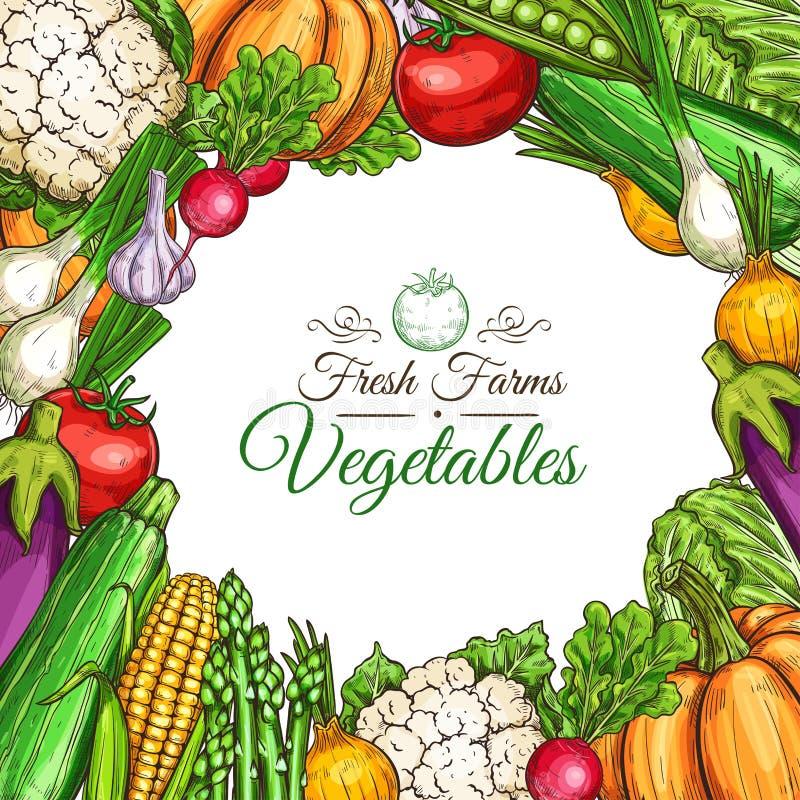 Vector o cartaz do esboço de vegetais ou de vegetarianos do fam ilustração do vetor