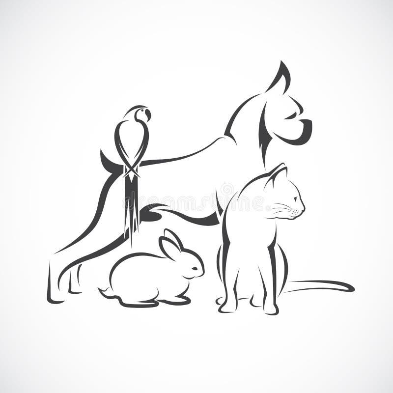 Vector o grupo de animais de estimação - cão, gato, pássaro, coelho, isolado ilustração do vetor