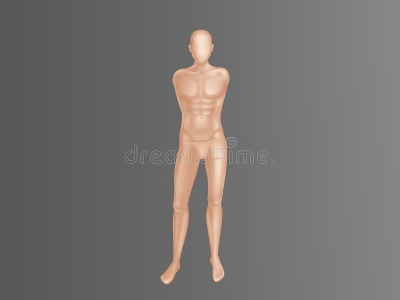 Vector o manequim masculino, manequim para a loja de roupa ilustração do vetor