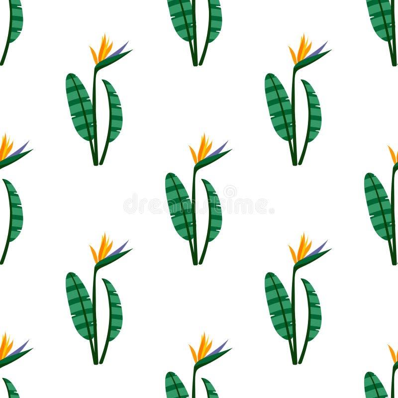 Vector o pássaro do teste padrão sem emenda das flores de paraíso ilustração royalty free