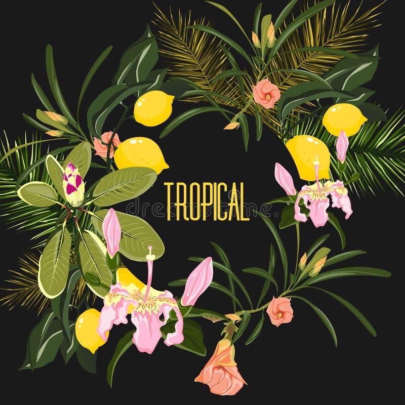 Vector o quadro escuro do círculo com folhas tropicais e floresce o fundo ilustração stock