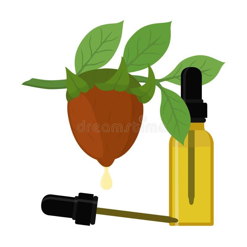 Vector o ramo do jojoba, simmondsia chinensis, planta dos cosméticos, óleo orgânico, erva do aroma no óleo essencial, garrafa com ilustração do vetor