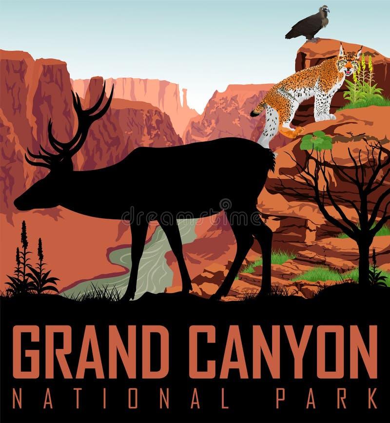 Vector o Rio Colorado no parque nacional de Grand Canyon com cervos, águia e lince ilustração stock