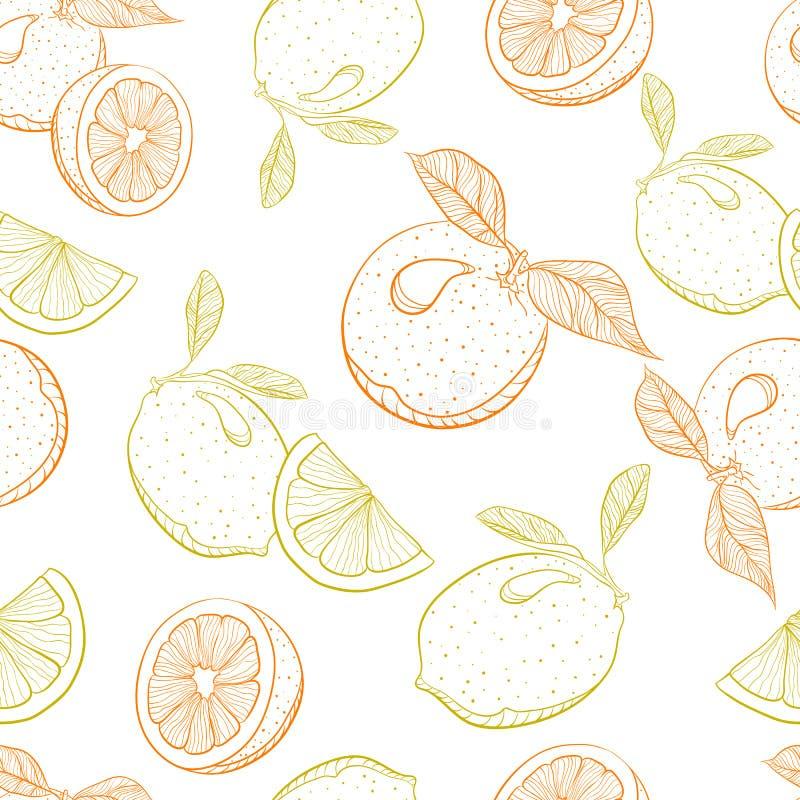 Vector o teste padrão do desenho da laranja e do limão do citrino ilustração do vetor