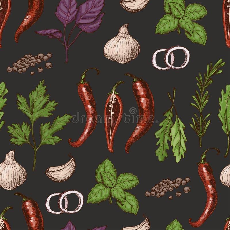 Vector o teste padrão sem emenda com as especiarias e as ervas diferentes da cor no estilo do esboço ilustração stock
