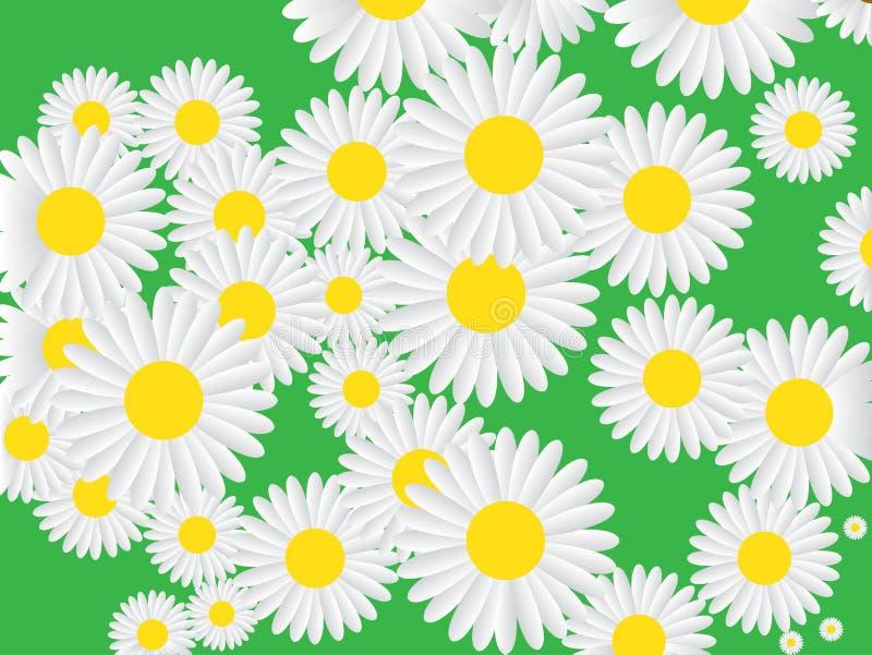 Vector o teste padrão sem emenda com a camomila no fundo verde Possa usado para imprimir o folheto, Web, bandeira, cartaz, partid ilustração stock