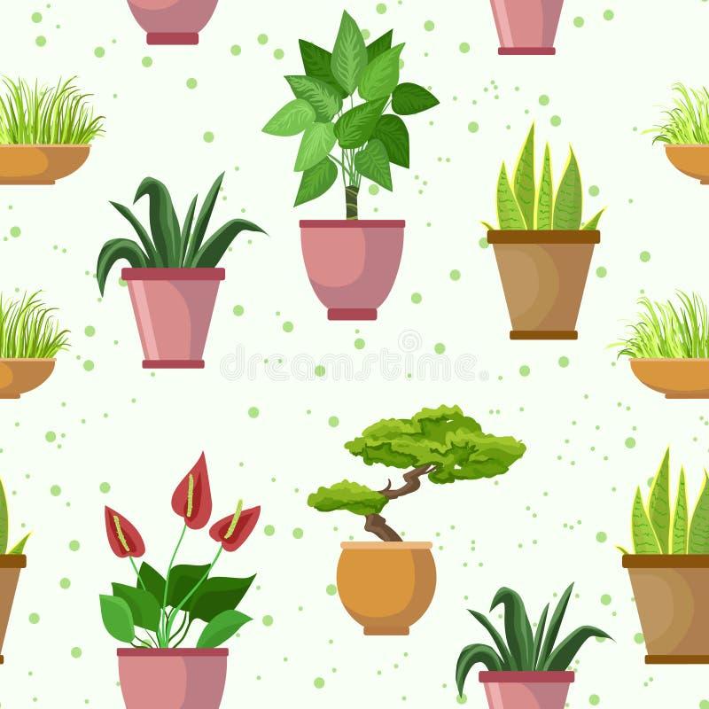 Vector o teste padrão sem emenda com potenciômetros de flor e houseplants Fundo decorativo da luz do grupo ilustração stock