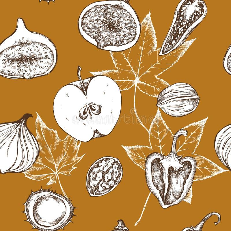 Vector o teste padrão sem emenda das maçãs, das pimentas, das cebolas e das nozes Ilustração desenhada mão do vetor ilustração royalty free