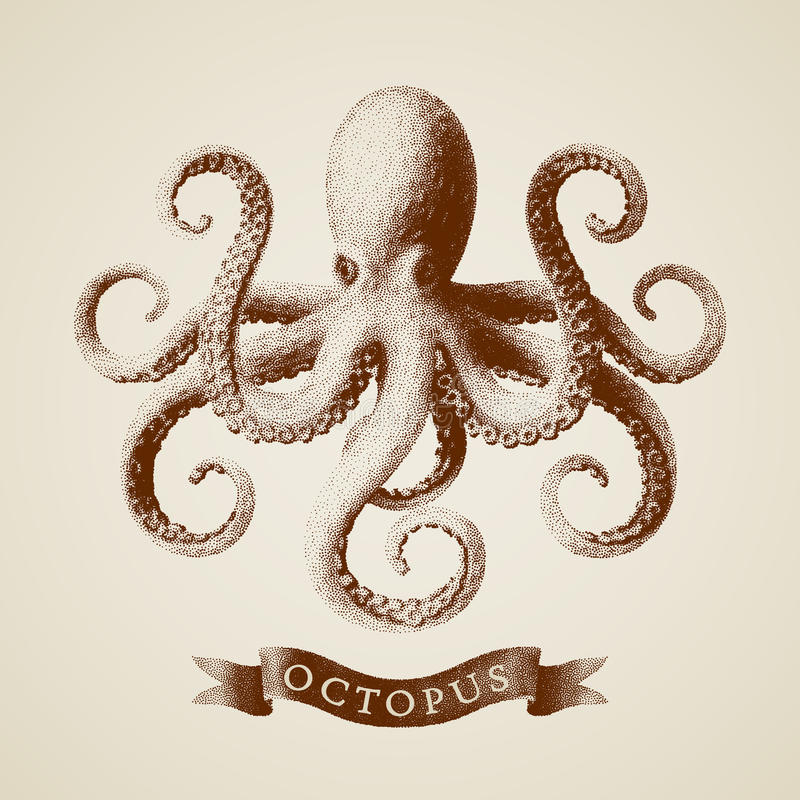 Vector octopus painted in engraving style vector illustration