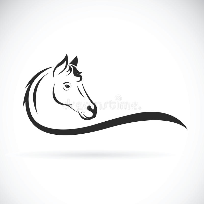 Free Vector Of A Horse Head On White Background. Animal Stock Photos - 97137313