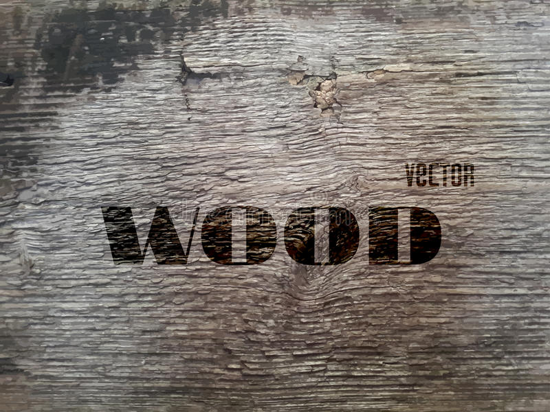 Vector Old Wood Texture royalty free illustration