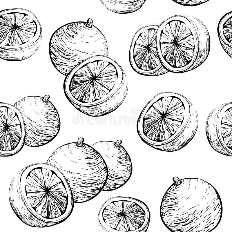 Orange pattern. Seamless background with Citrus fruit stock illustration