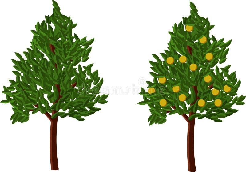 Vector orange tree royalty free stock images