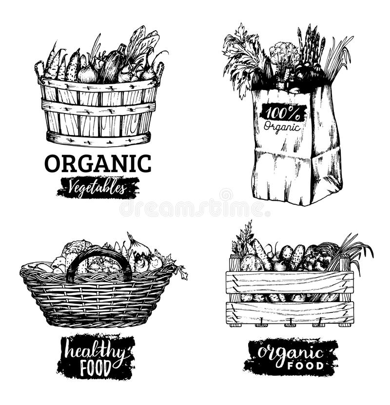 Set Of Illustrations Of Farm Products . Stock Vector