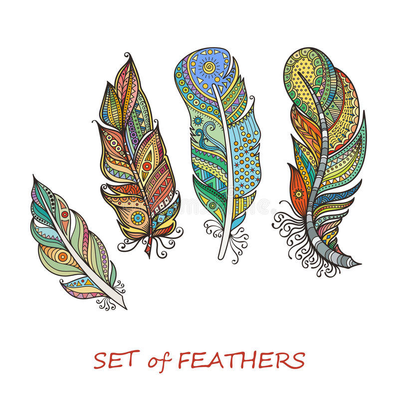 vector ornate set stylized abstract feathers elements design coloring pages
