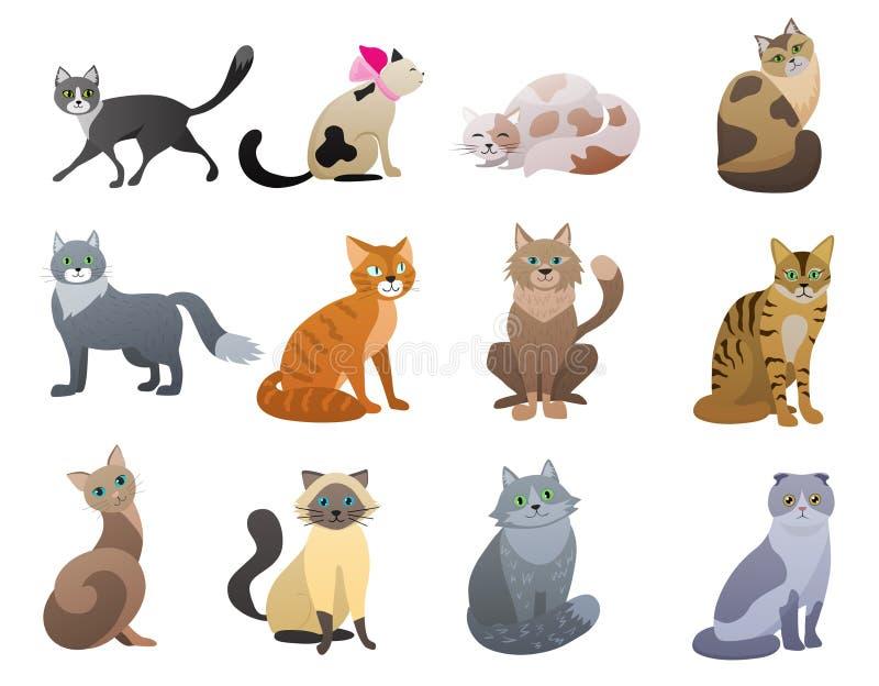 Vector os caráteres diferentes do animal de estimação das raças do gato engraçado e bonito dos desenhos animados ajustados ilustração do vetor