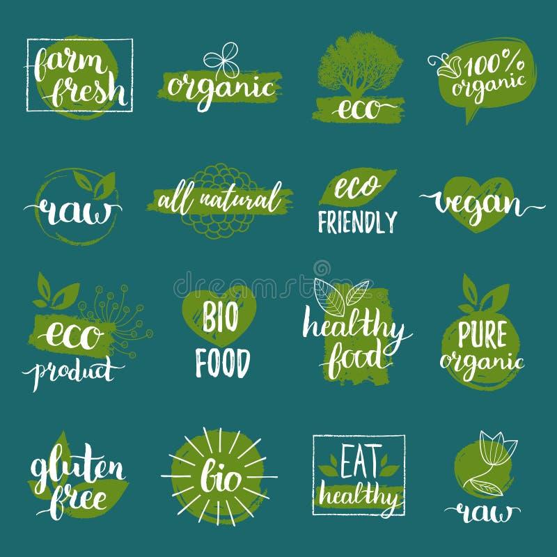 Vector os logotipos do eco, os orgânicos, os bio ou os sinais O vegetariano, crachás saudáveis do alimento, etiquetas ajustou-se  ilustração royalty free