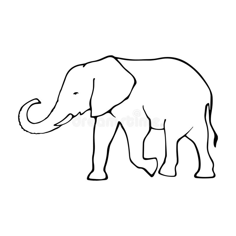 Elephant Line Drawing Tattoo : Vector outline elephant illustrarion stock