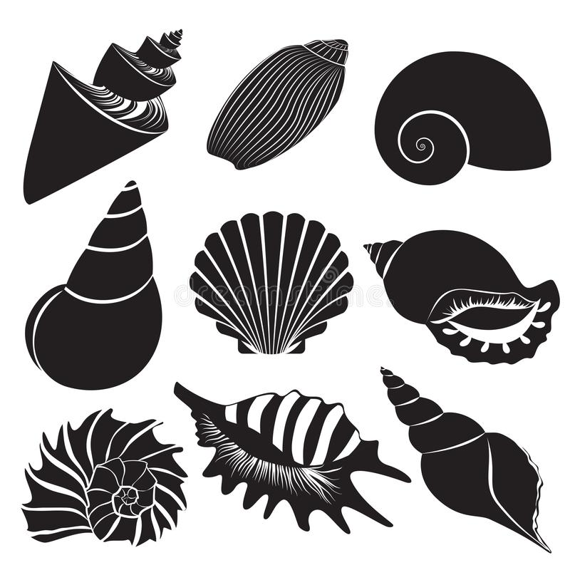 Vector overzeese shells Zeeschelpsilhouetten geplaatst geïsoleerd stock illustratie