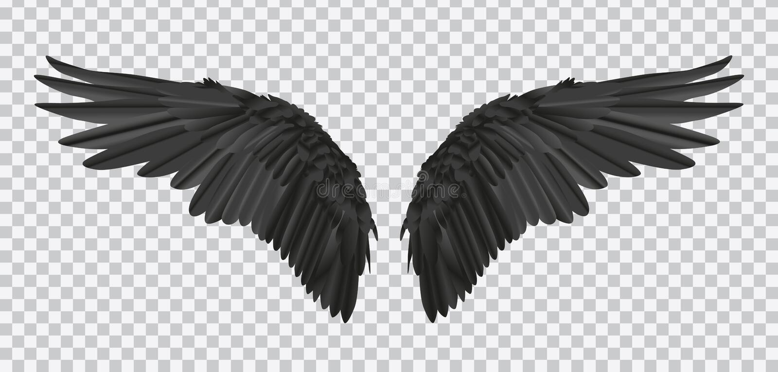 Vector pair of black realistic wings on transparent background vector illustration