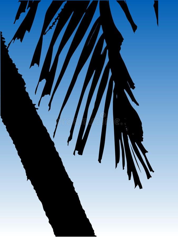 Vector Palm stock illustratie