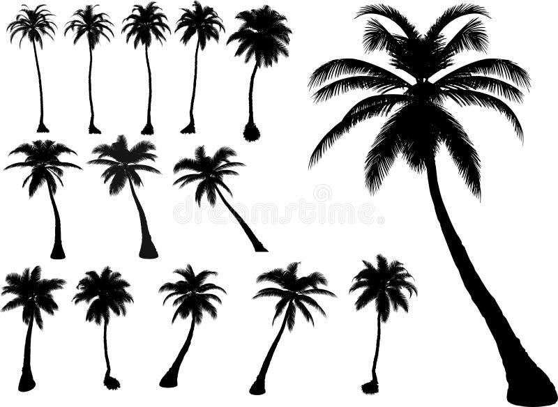 Vector palmen en bomen stock illustratie