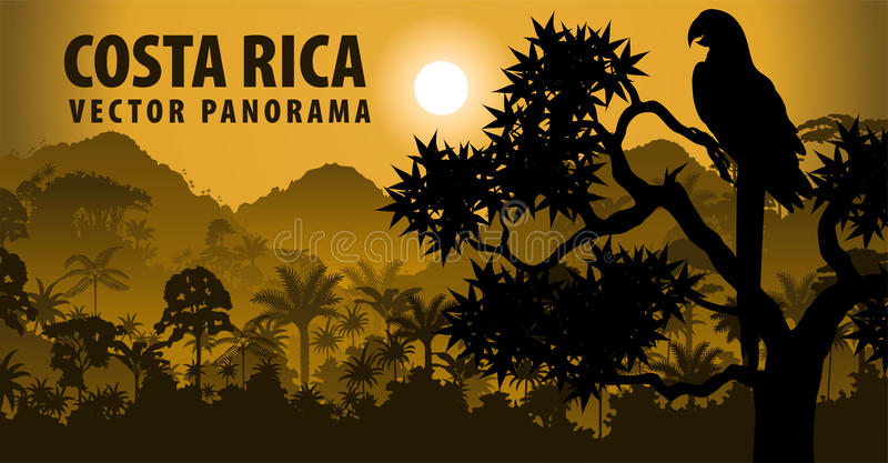 Vector panorama of Costa rica with jungle raimforest withara makaw parrot. Illustration stock illustration