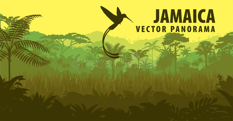 Vector panorama of Jamaica with jungle and hummingbird. Illustration vector illustration