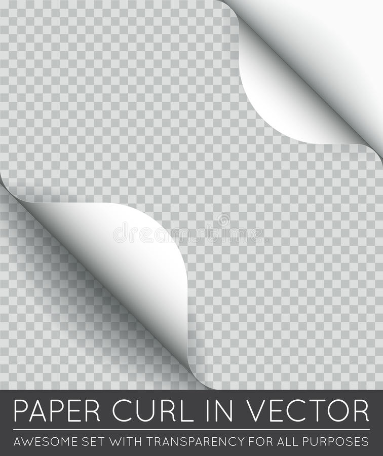 Vector Paper Page Curl with Shadow Isolated. EPS 10 vector illustration