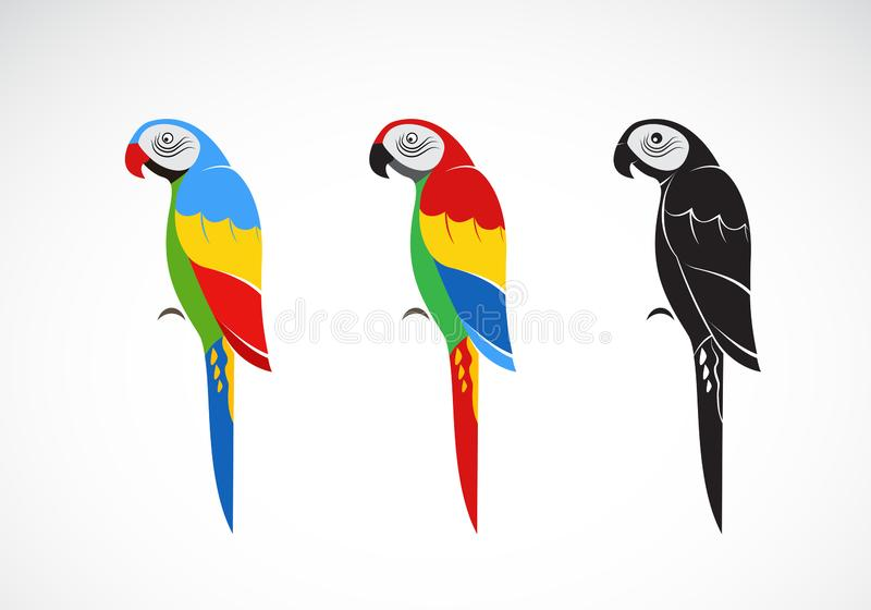 Vector of a parrot design on white background., Bird Icon., Wild Animals. royalty free illustration