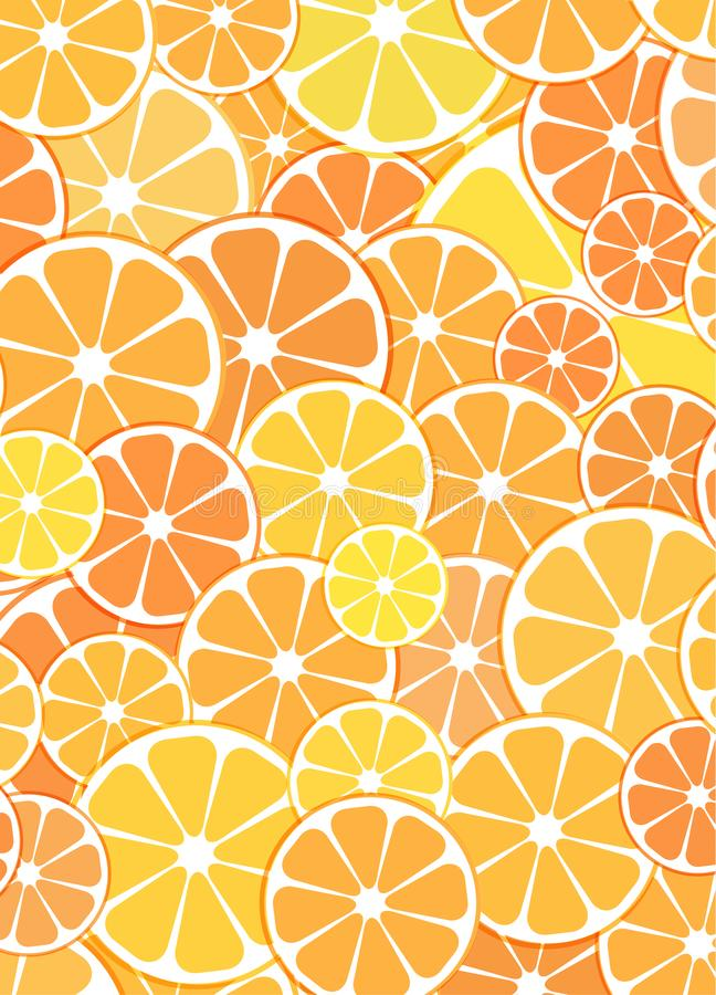 Vector Pattern background. sliced halves of citrus fruits orange. S and tangerines. For business projects banner, brochure, layout, flyer royalty free illustration