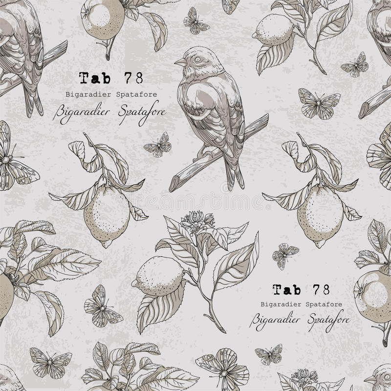Vector pattern with bird,lemon branches,apple,leaves,butterfly stock illustration