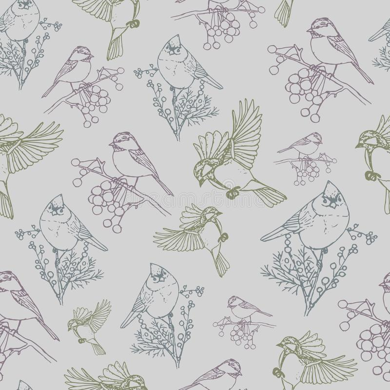 Vector pattern with colorful birds grey background stock photography