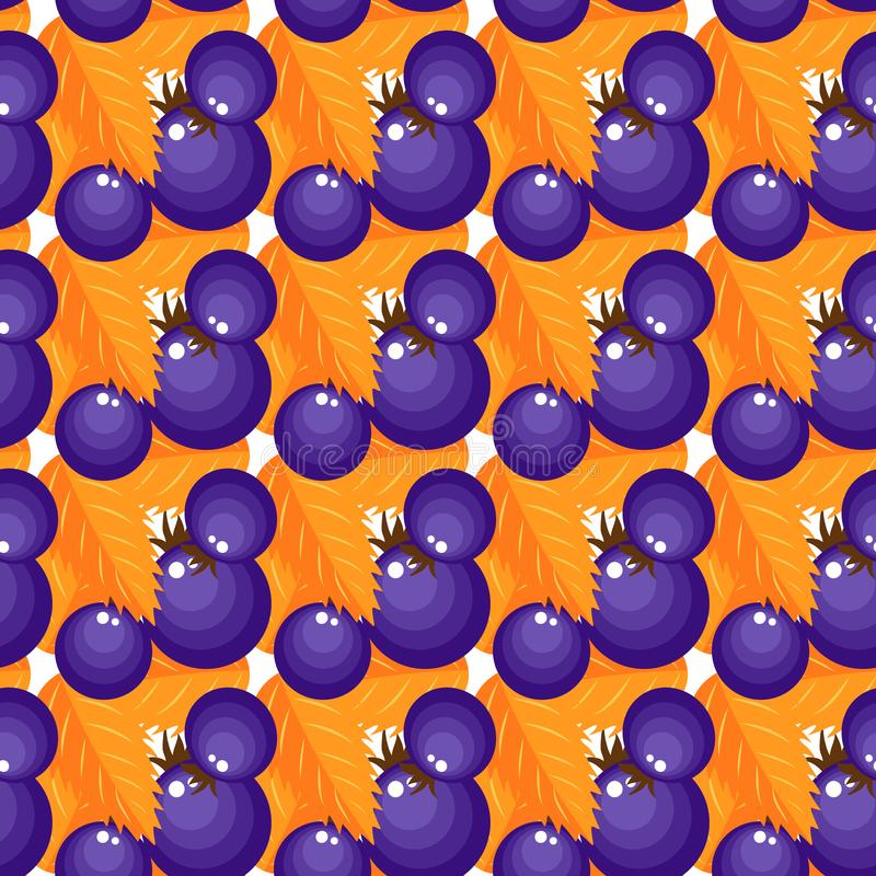 Vector pattern purple berries with orange foliage vector illustration