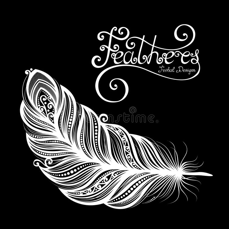 Vector Peerless Decorative Feather stock illustration