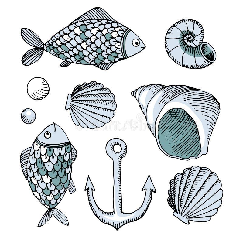 Vector peixes e shell e âncora tirados mão ilustração royalty free