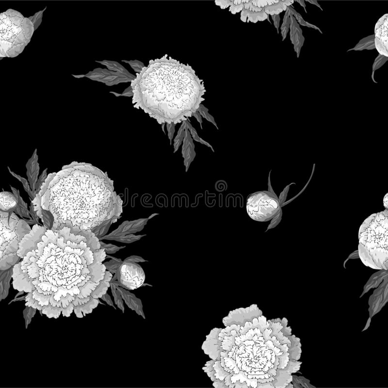 Vector peonies. Seamless pattern of monochrome white flowers. Bouquets of flowers on a black background. Template for floral royalty free illustration