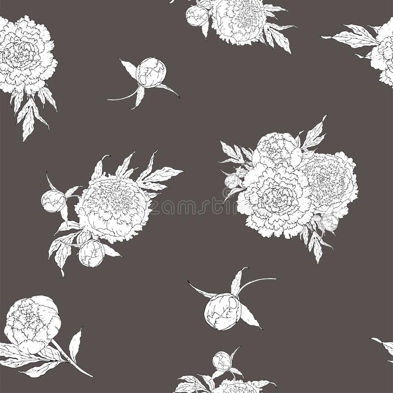 Vector peonies. Seamless pattern of monochrome white flowers. Bouquets of flowers on a gray background. Template for floral royalty free illustration