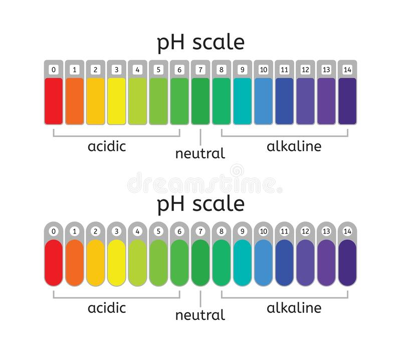 Vector ph scale of acidic,neutral and alkaline value chart royalty free illustration