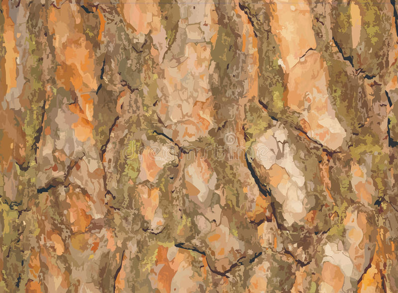 Vector Pine Bark Stock Image