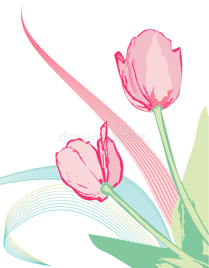 Free Vector Pink Tulips Royalty Free Stock Images - 2363249