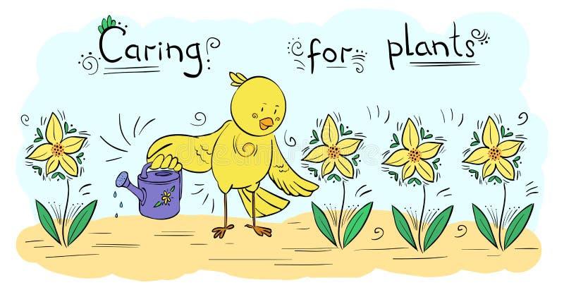 Vector plantas molhando do pássaro da ilustração da decoração - cartão ilustração stock