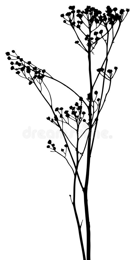 Free Vector Plants Silhouettes Royalty Free Stock Image - 7257856