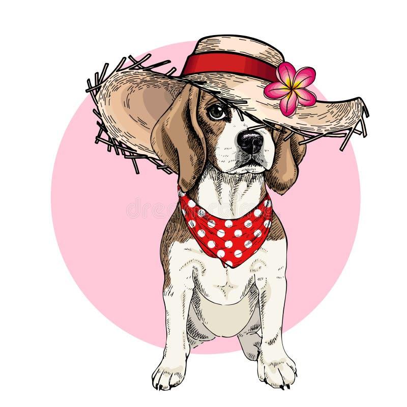 Vector Porträt des Spürhundhundetragenden Strohhutes, der Blume und des Tupfen Bandana Sommermode-Karikaturillustration Hand lizenzfreie abbildung